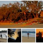 Il paradiso all'improvviso. La baia di Tofo in Mozambico fra mante, megattere e squali balena