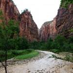 Diario di viaggio in USA. Capitolo 9: il giardino roccioso dello Zion National Park