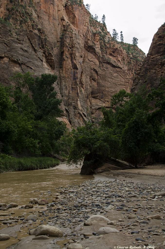 Virgin River, Zion National Park: i Narrows rimango ancora un mistero!