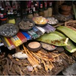 Mozambico: Maputo, Xipamanine. Alla scoperta della medicina tradizionale