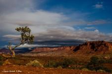 Utah. panorama