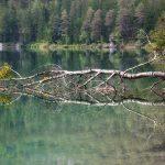 Gita al lago di Tovel per tutta la famiglia: fra natura, leggende e buona tavola