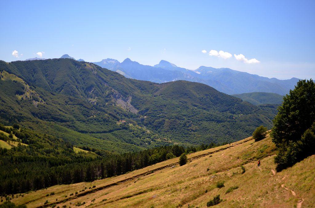 Panorama lungo il sentiero con vista sulle Apuane