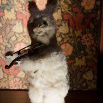 Musica, sogno e tecnica: visita al Museo Speelklok di Utrecht