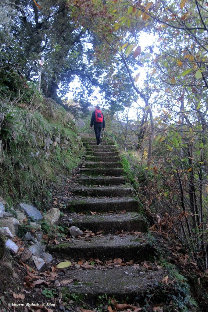 un tratto dell'antica scalinata sul sentiero