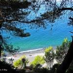 Assaggio di primavera fra il cielo e il mare di Montemarcello (SP)