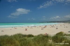 Spiagge Bianche di Vada