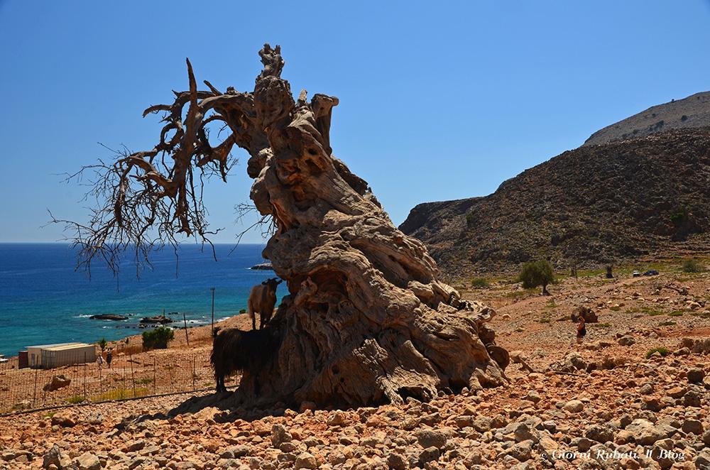 nei pressi di Loutro, Creta: sinistri presagi