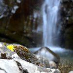 Lunigiana da scoprire: la Cascata Farfarà