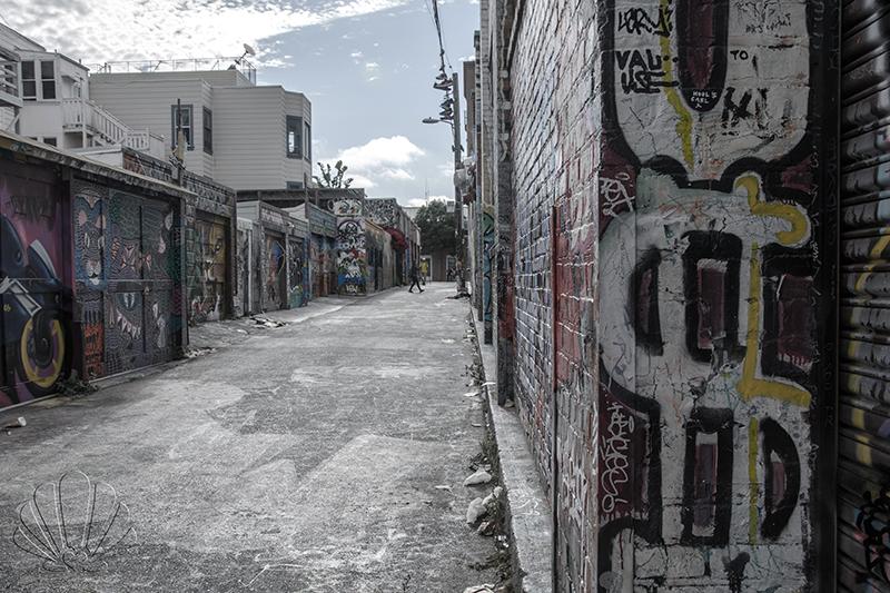 San Francisco,la street art di Mission, Clarion Alley