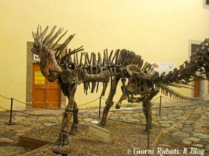 Calci: ricostruzione paleontologica