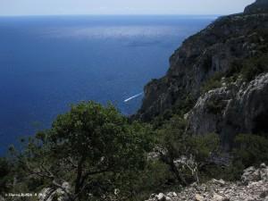 Il panorama delle falesie del Golfo di Orosei