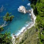 C'era una volta una gatta… a picco sul mare blu. Camminando fra Levanto e Monterosso per il #WeLevanto