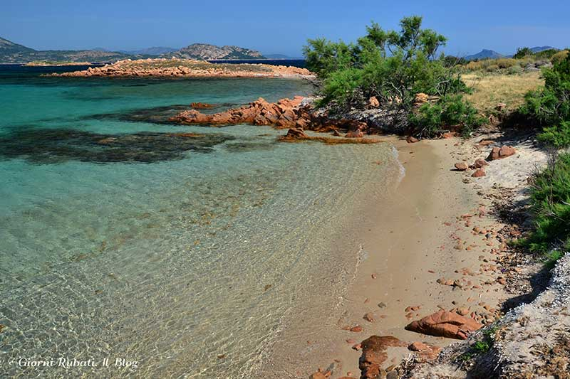 Tavolara, spiagge paradisiache