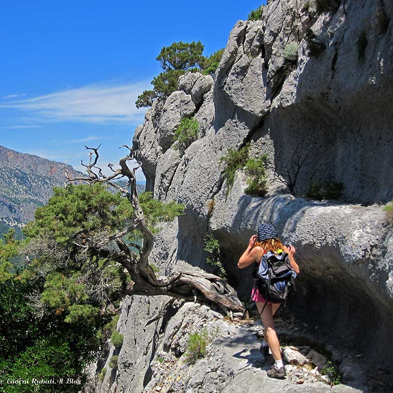 Lanaitto. Viaggio al centro della Sardegna fra sorgenti, grotte e banditi