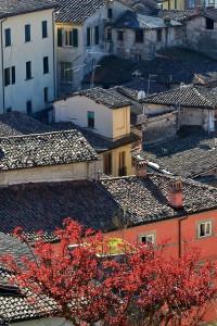 i tetti di Barga dal Duomo di San Cristoforo