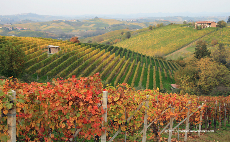 Foliage autunnale sulle Langhe. Ph. Matrioska adventures