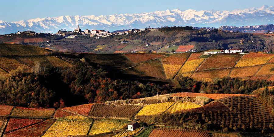 Piemonte, Langhe