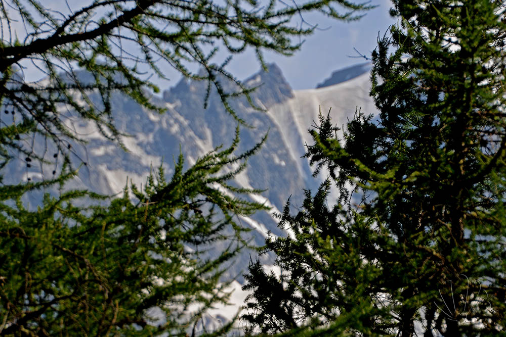 montagna e ghiacciaio