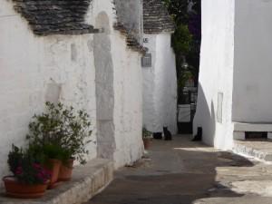 Alberobello: chiesa