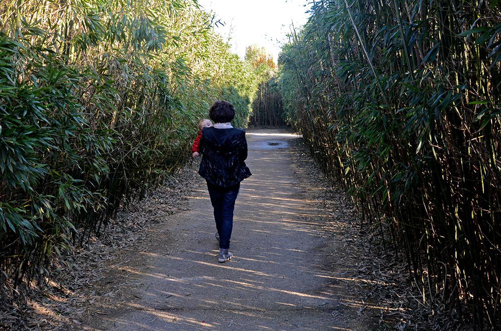 Camminando al Labirinto della Masone, Fontanellato (Parma)