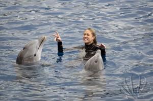 Oceanografìc, Valencia, delfinario