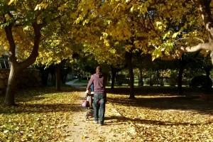 Valencia: passeggiando nei giardini del Turia