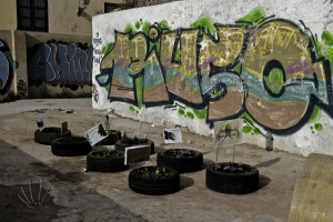 Valencia, barrio del Carmen: urban invaders