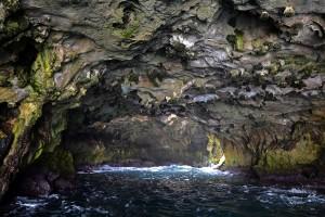 un caleidoscopio naturale sotto Polignano: la grotta stampagnata