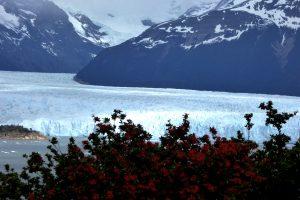 Il Brazo Rico del Perito Moreno