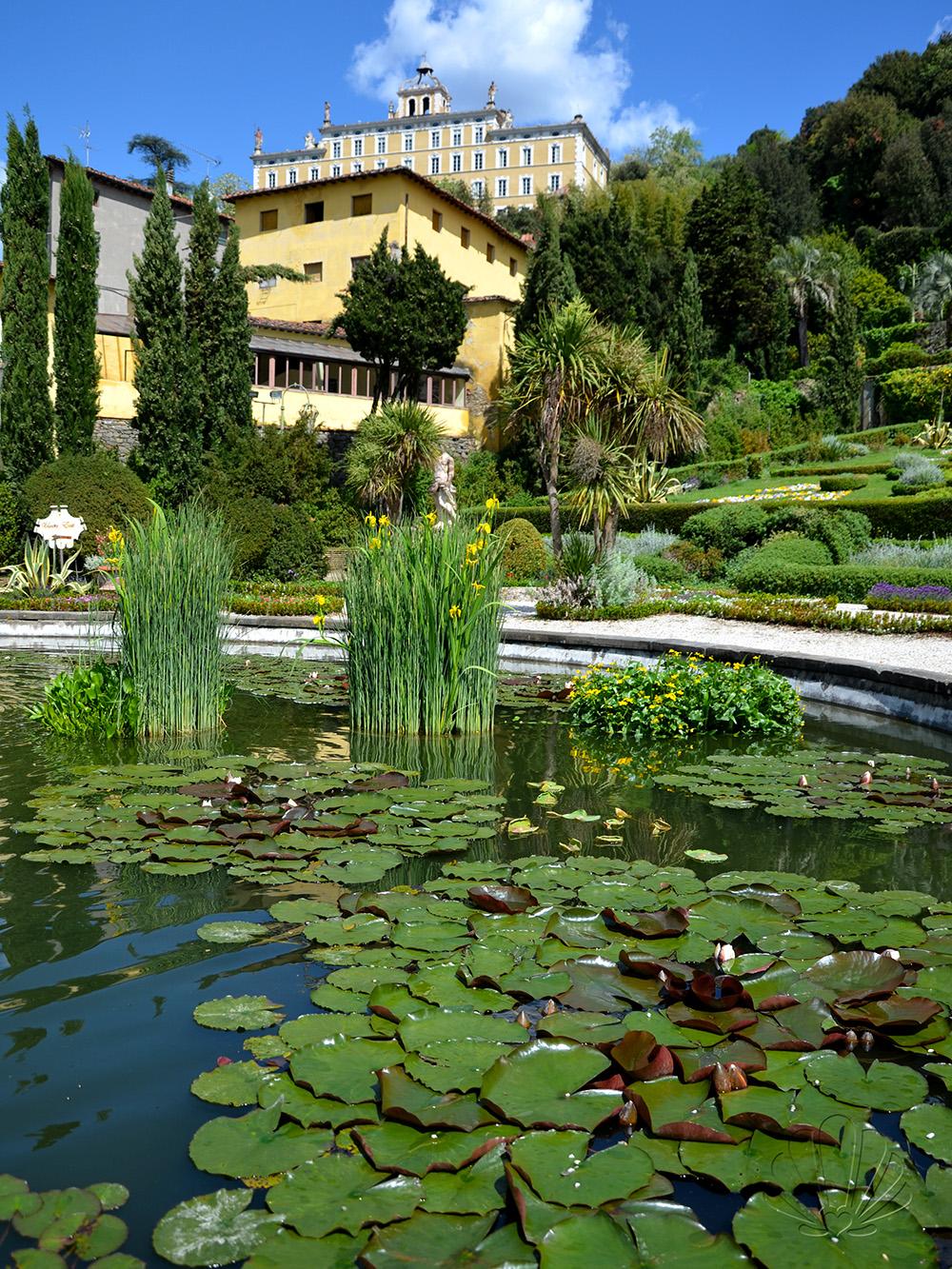 Non solo Pinocchio: a Collodi, lo storico giardino e la butterfly house di  Villa Garzoni — Giorni Rubati