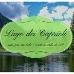 Al lago dei Caprioli coi bambini: una gita morbida e verde nella Valle di Sole