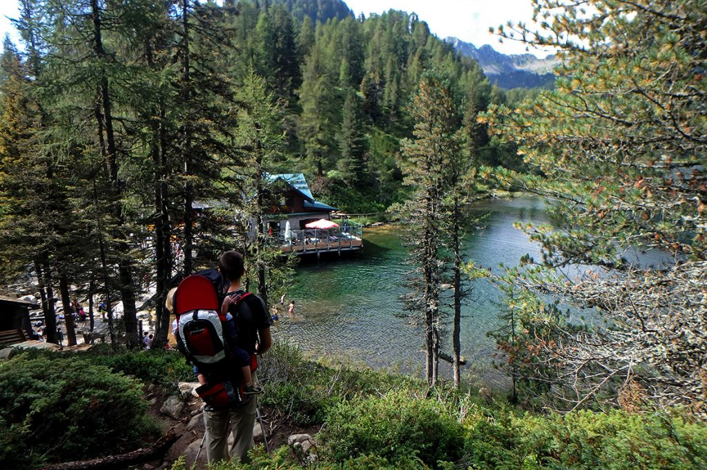 lago-malghette-dal-bosco