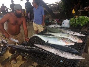 Grigliata di pesce sull'isola di Curieuse