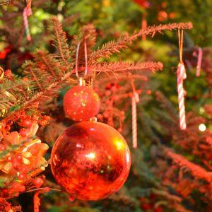 La magia del Natale alla Casa di Babbo Natale