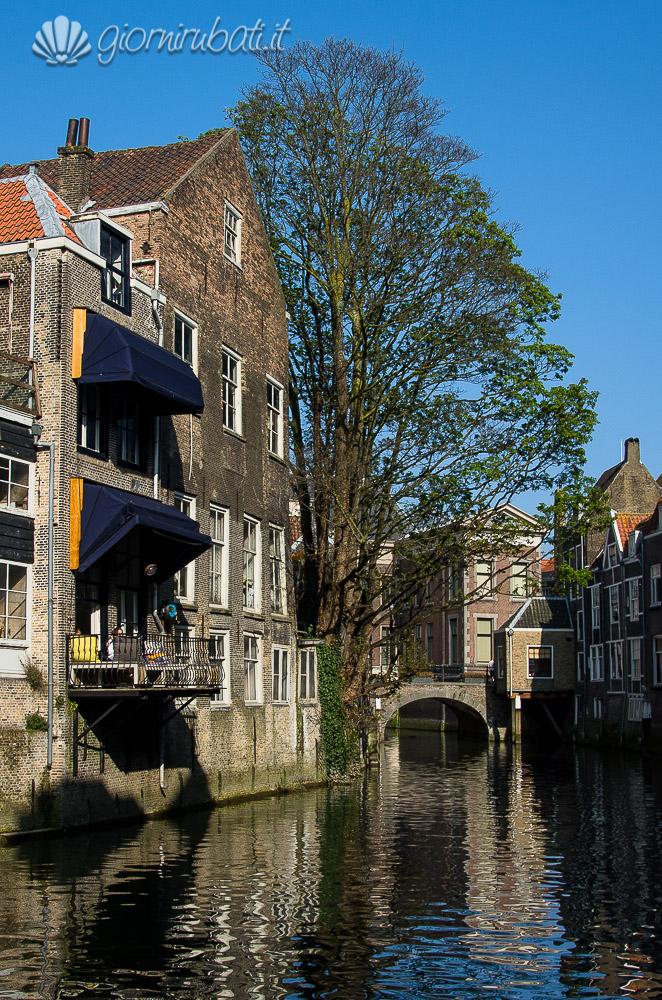 Dordrecht, Biesbosch e Kinderdijk: in Olanda, dove la terra nasce dall'acqua
