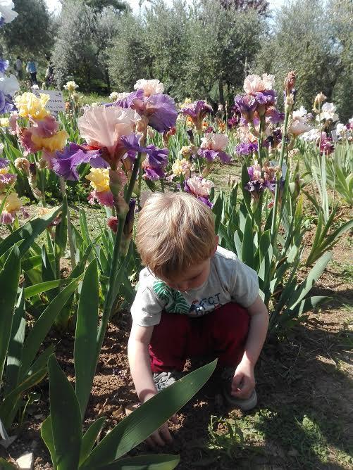 Firenze con i bambini: spunti di visita
