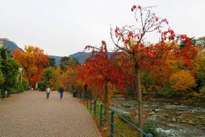 passeggiata lungo il Passirio_photocredit-Lucia-Scalzo