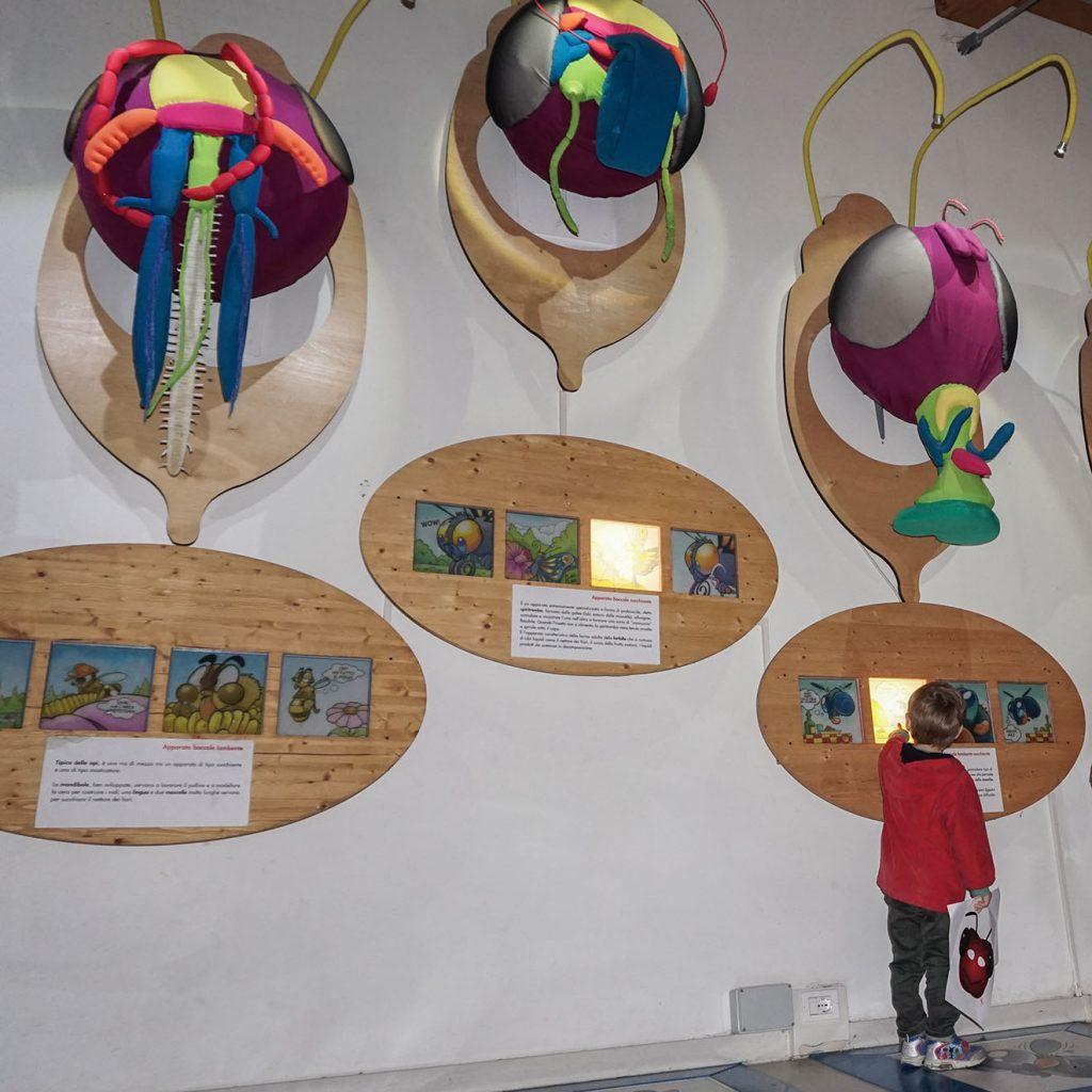 La casa delle farfalle di Milano Marittima con i bambini