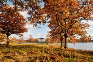 Autumn at Torpa Stenhus