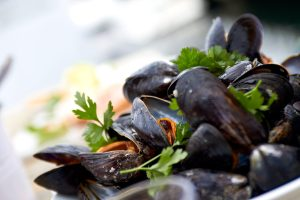 Cooked mussels on a plate - Photo cred Jonas Ingma