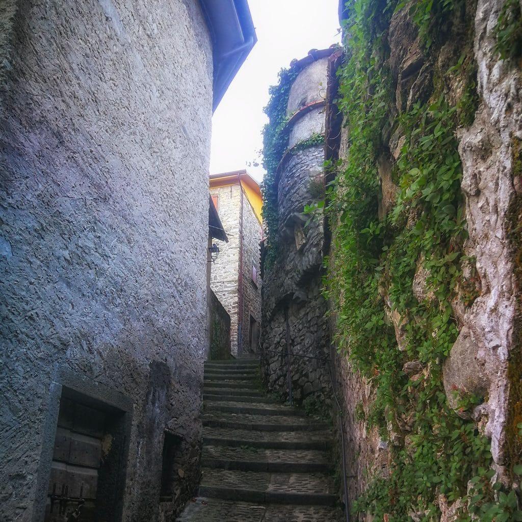 Taponecco