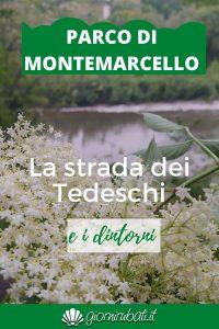 Strada dei Tedeschi Parco di Montemarcello
