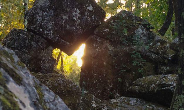 La Farfalla dorata del caprione: lunigiana misteriosa